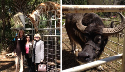 Appleton Creativeu0027s President, Diana LaRue, Attended The Central Florida Zoo  And Botanical Gardensu0027 Fundraising Luncheon On Thursday, March 21st To  Support ...