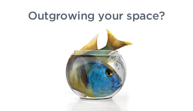 outgrowing your space ORRA ad