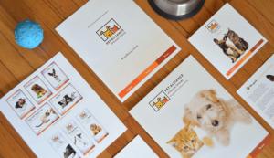 offline marketing materials