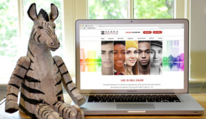 Orlando web design services for Zebra Coalition